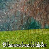 45 Harmonious Sounds To Help Rest by Lullaby Land