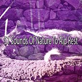 51 Sounds Of Nature To Aid Rest by Einstein Baby Lullaby Academy