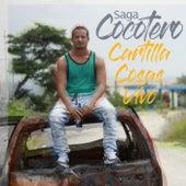 Cocotero de Saga