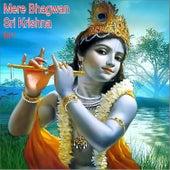 Mere Bhagwan Sri Krishna, Vol. 1 by Various Artists