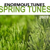 Spring Tunes 2009 von Various Artists