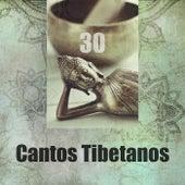 Cantos Tibetanos (30 Música Curativ, Los Cuencos Cantores Tibetanos, Meditación Budista y Atención Plena) de Various Artists