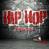 Hip Hop Experience by Various Artists