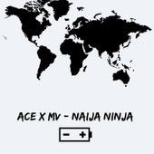 Naija Ninja (feat. MV) by Ace