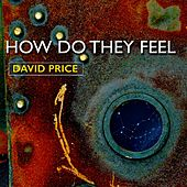 How Do They Feel (feat. Amanda Edwards) by David Price