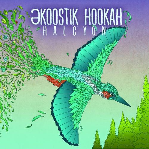 Halcyon by Ekoostik Hookah