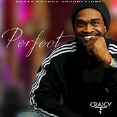 Perfect von Craigy T (T.O.K.)