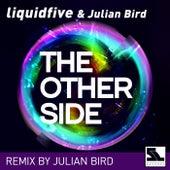 The Other Side (Julian Bird Remix) de Liquidfive