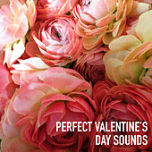 Perfect Valentine's Day Sounds by Various Artists