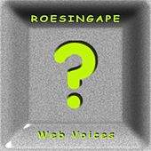 Web Voices by Roesing Ape