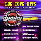Los Tops Hits de la Cumbia Ranchera de Various Artists