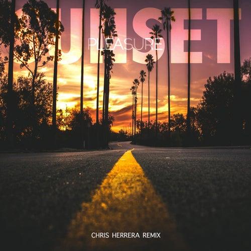 SUNSET (Chris Herrera Remix) by Pleasure