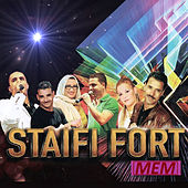 Staifi fort by Various Artists