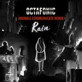 Rain (Remix) von Octafonic