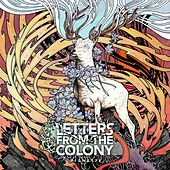 Vignette by Letters From The Colony