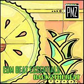 EDM Beat Essentials: Back 2 the Beat by PMZ