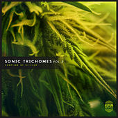 Sonic Trichomes, Vol. 2 by Various