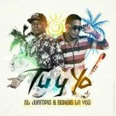 Tu y Yo de Various Artists