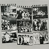 Live (Live) de David Johansen Group