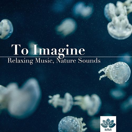 To Imagine: Relaxing Music, Nature Sounds, Heaven Music, Meditation & Yoga by The Baby Einstein Music Box Orchestra