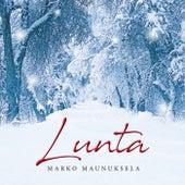 Lunta von Marko Maunuksela