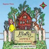 Mollis Sommer voller Geheimnisse von Ingunn Thon
