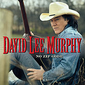 No Zip Code by David Lee Murphy