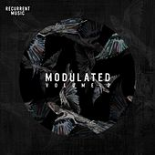 Modulated, Vol. 2 by Various Artists