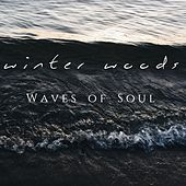 Waves of Soul von Winter Woods