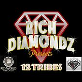 12 Tribes (Richdiamondz Presents) by Various Artists