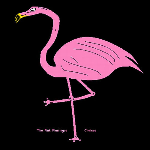 Choices by The Pink Flamingos