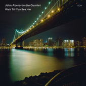 Wait Till You See Her by John Abercrombie