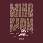Mind Lion by Arielle