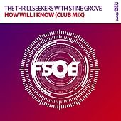 How Will I Know (Club Mix) (with Stine Grove) by Thrillseekers