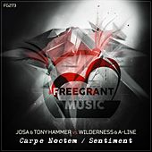 Carpe Noctem  / Sentiment - Single by Various Artists