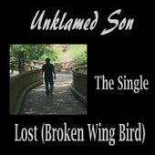 Lost (Broken Wing Bird) by Unklamed Son