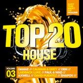 Top 20 House, Vol. 3 von Various Artists
