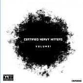 Certified Heavy Hitters, Vol. 1 by Various Artists