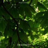 Spacelander by Regression Inc