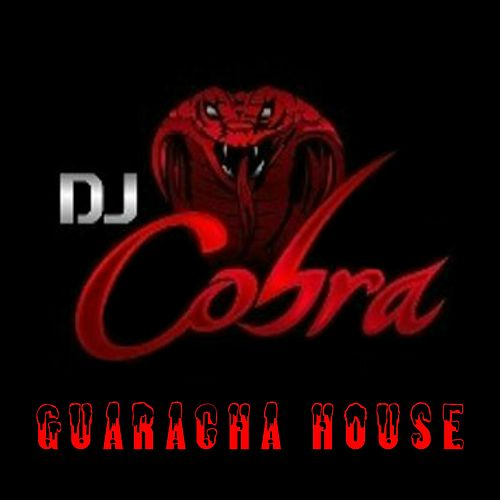 Guaracha Hause (Deluxe Edition) by DJ Cobra