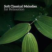 Soft Classical Melodies for Relaxation by Musica Relajante Oasis