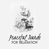 Peaceful Sounds for Relaxation de Deep Relax Music World