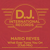 What Ever Turns You On (Club Mix) by Mario Reyes