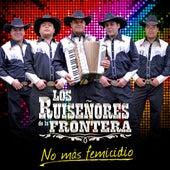 No Más Femicidios by Los Ruiseñeros de la Frontera