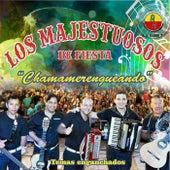 Chamamerengueando: Temas Enganchados (feat. Los Majestuosos del Chamamé) by Los Majestuosos de Fiesta