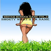 Winter Hunger Games, Vol. 3 (Shorty What's Ya Name) by Ali Sheik