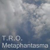 Metaphantasma by TRO