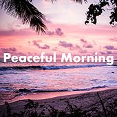 Peaceful Morning by Various Artists