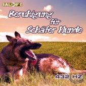 Beruhigung für Schäfer Hunde by 432 Hz