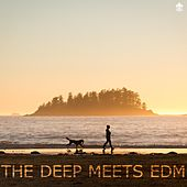 The Deep Meets EDM by Various Artists